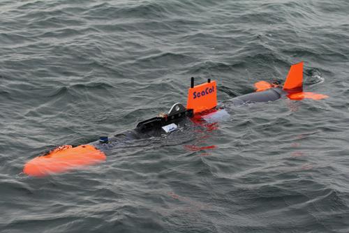 SeaCat_afloat